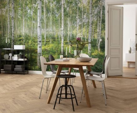 Wallpaper mural Sunny Day forest